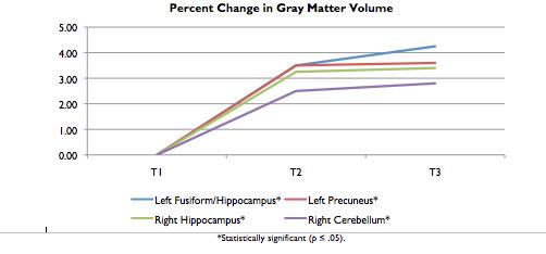 Gray Matter Volume